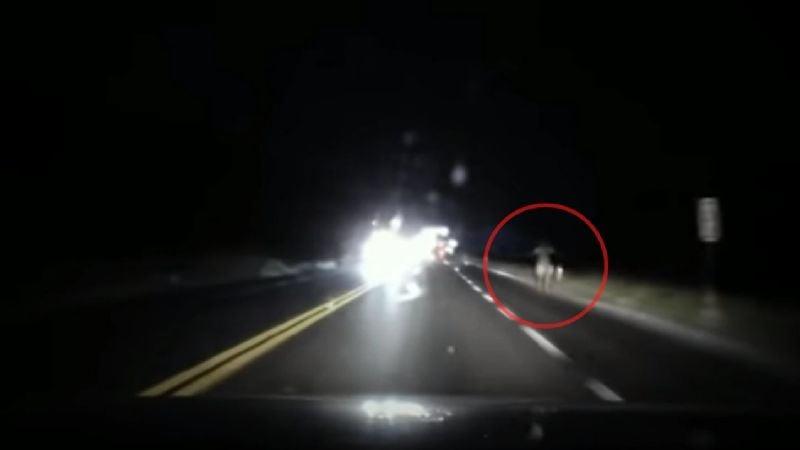 VIDEO: Vio algo raro en la ruta y lo filmó: ¿Es la Llorona?